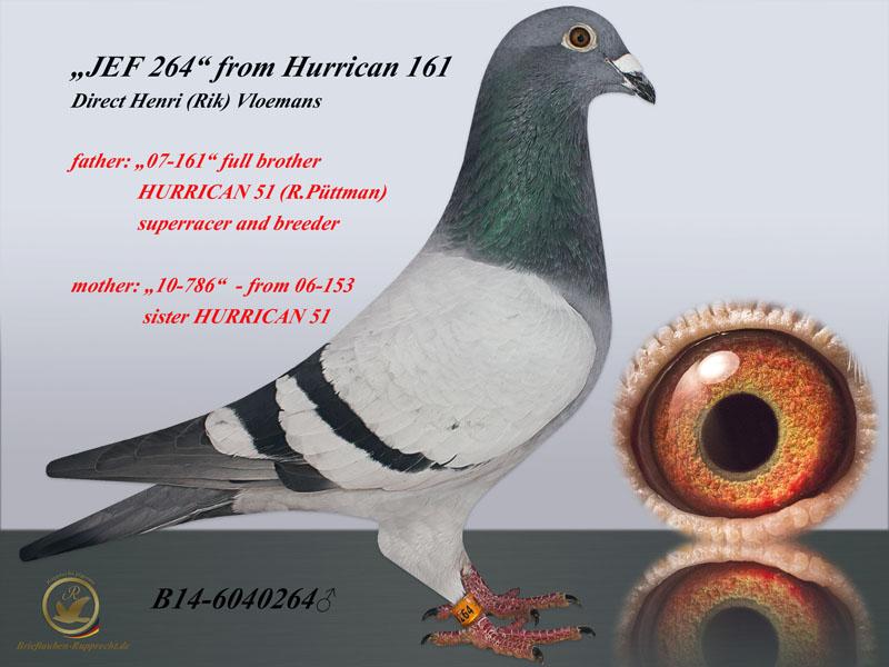HURRICAN51 line