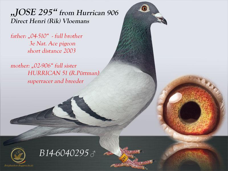 HURRICAN51