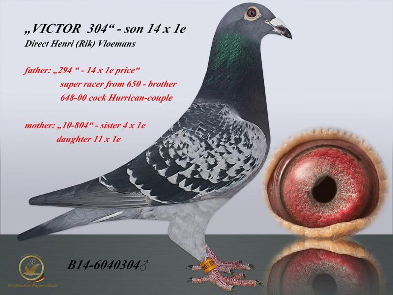 VLOEMANS -FRANS WOUTERS- 14 x 1e