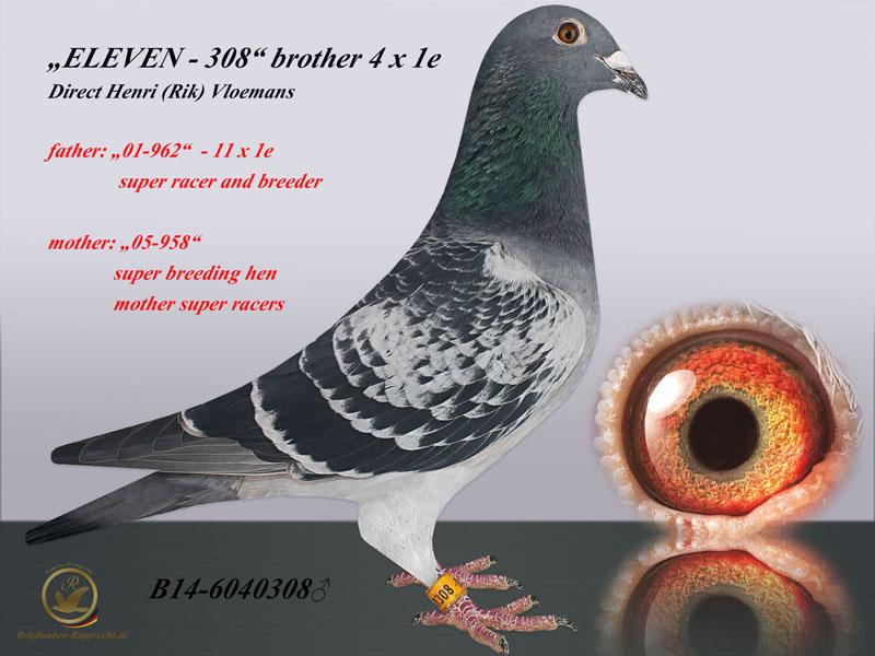 ELEVEN son 11 x 1e - VLOEMANS